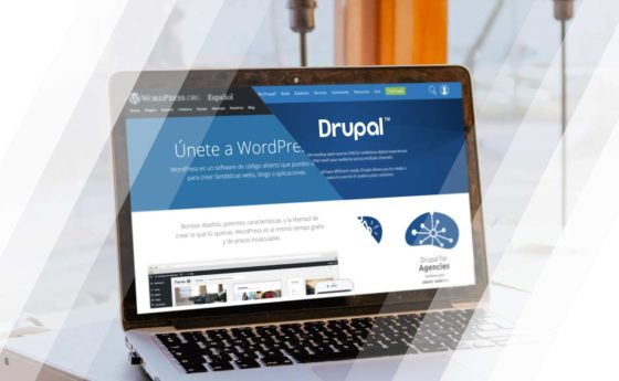 wordpress i drupal