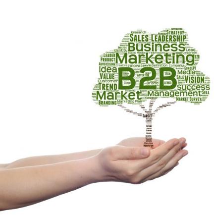 importancia del marketing b2b